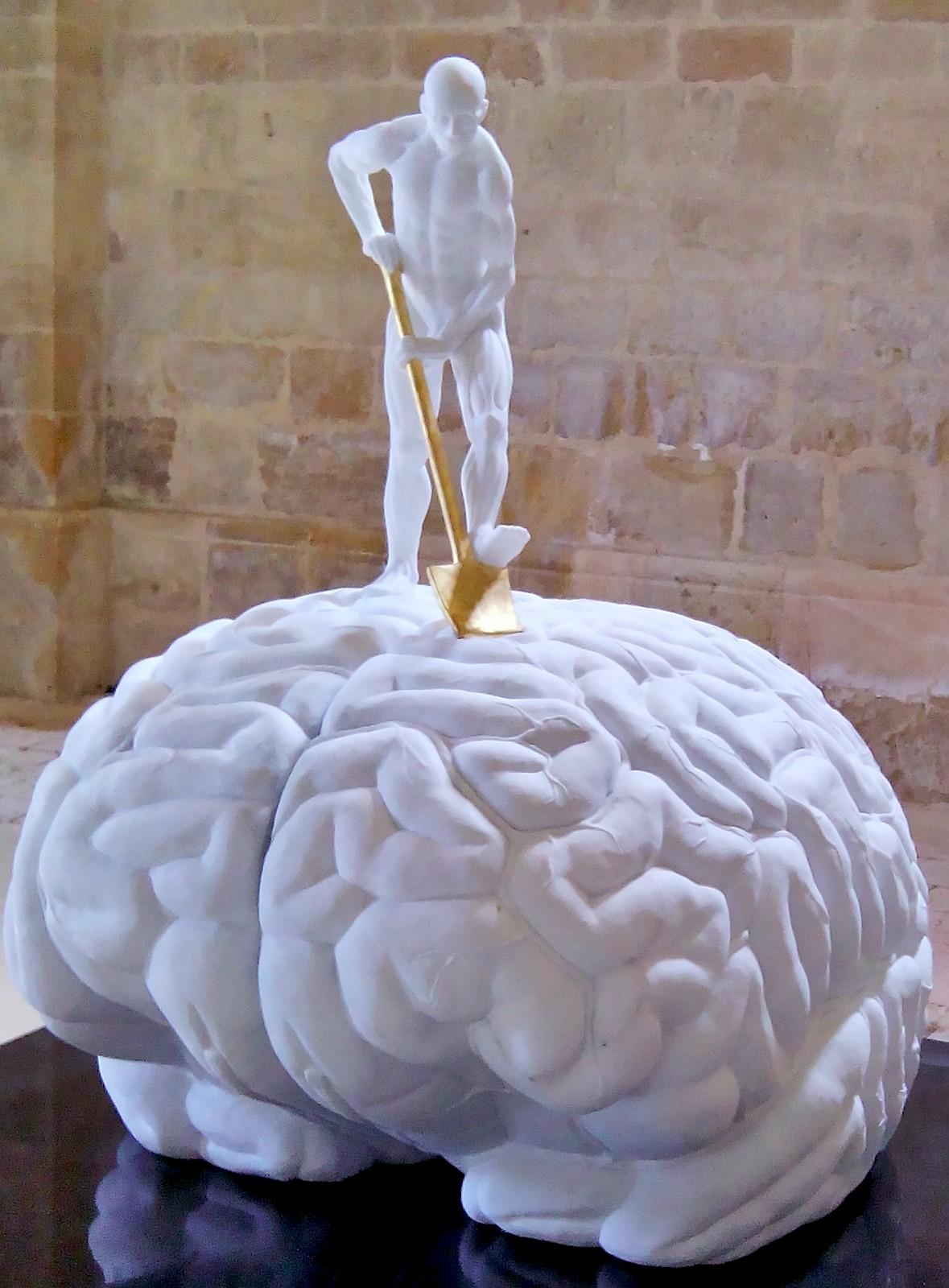 Fuite du cerveau