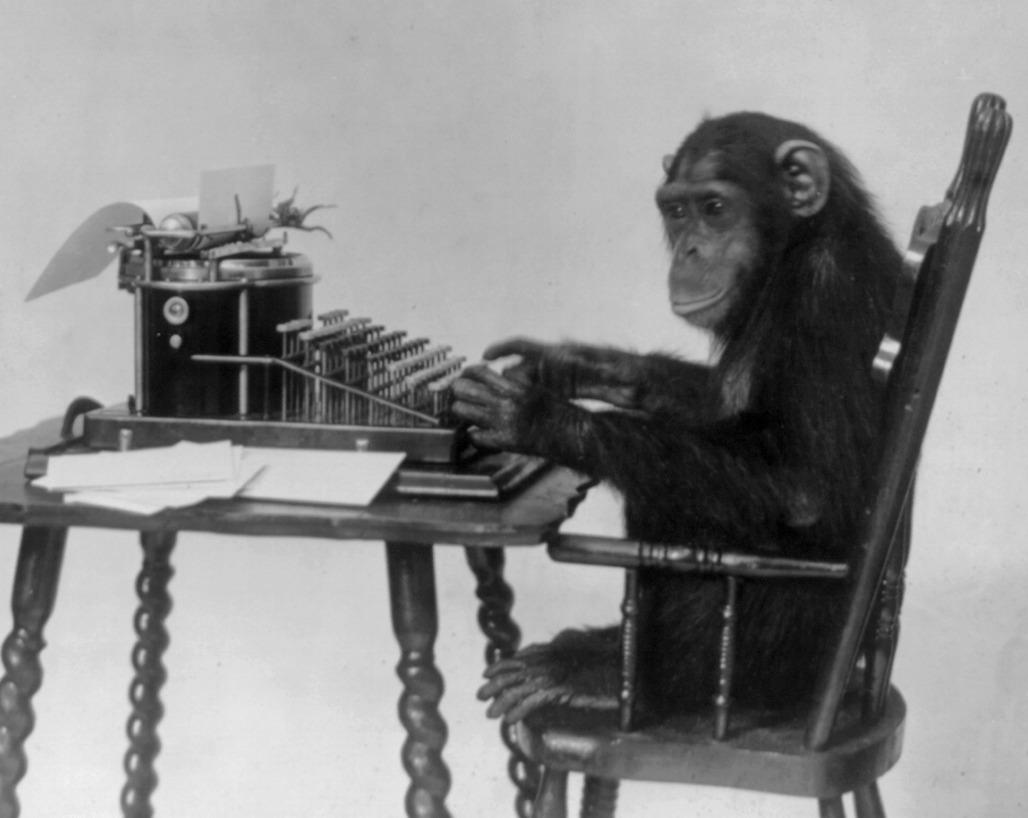 Singe tapant à la machine à écrire