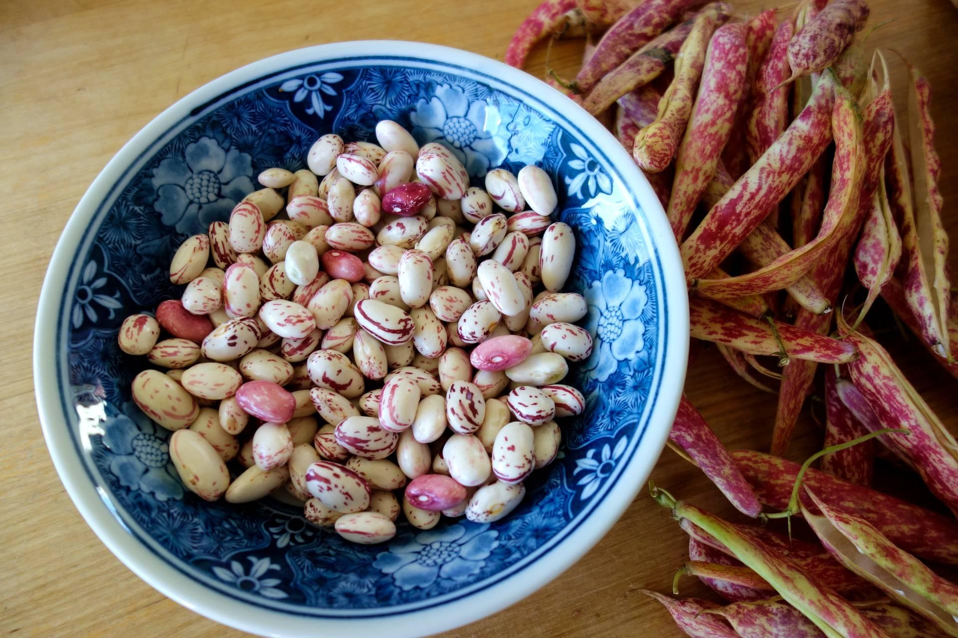 Bol de haricots frais du Portugal